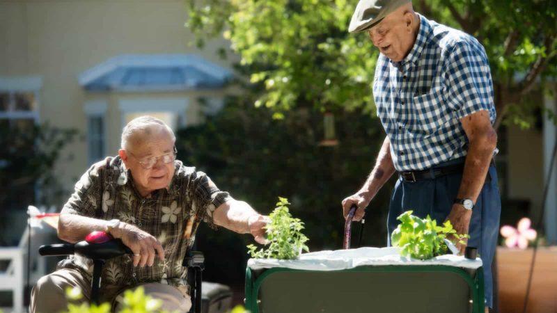 Men-Gardening-1600x900